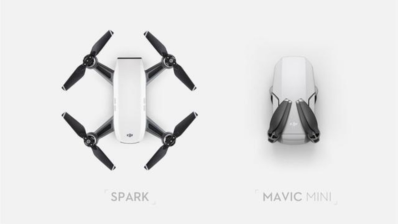 Mavic Mini vs Spark: что выбрать?