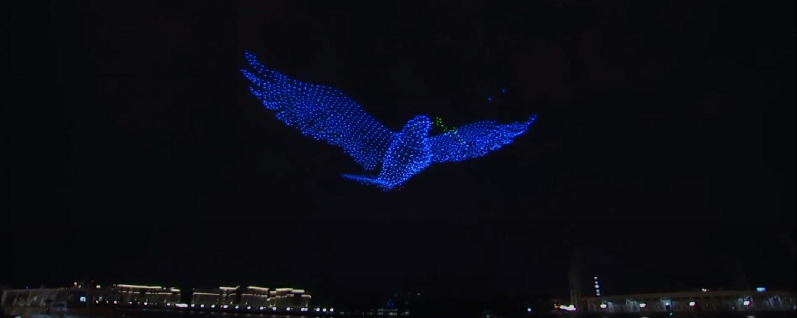 Шоу дронов в Петербурге «Мирное небо»