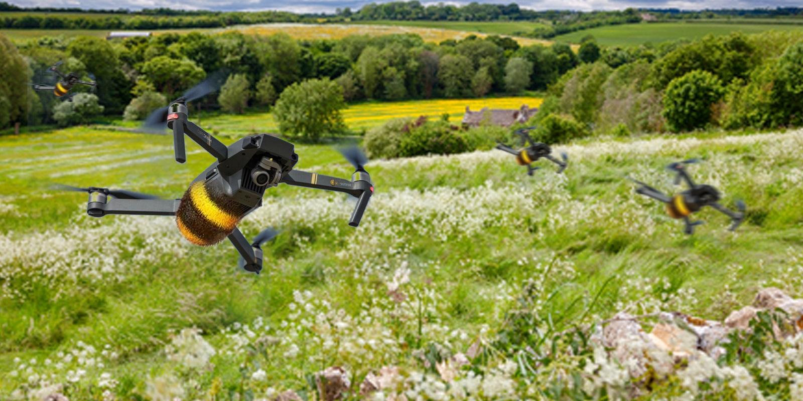 Могут ли дроны научиться у жуков?